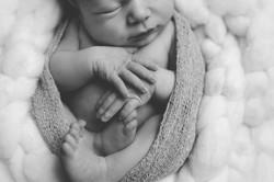 newborn organico