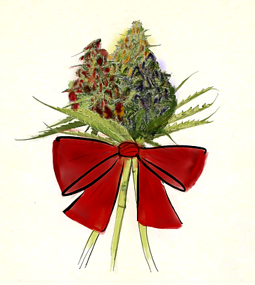 dec 2020 bud with no signature.png