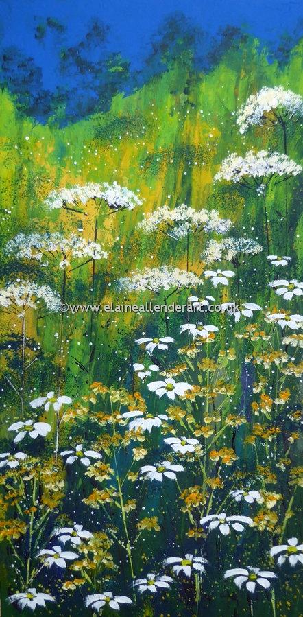 resize_high summer meadow (1).jpg