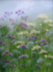 resize_verbena and cow parsley (2).jpg