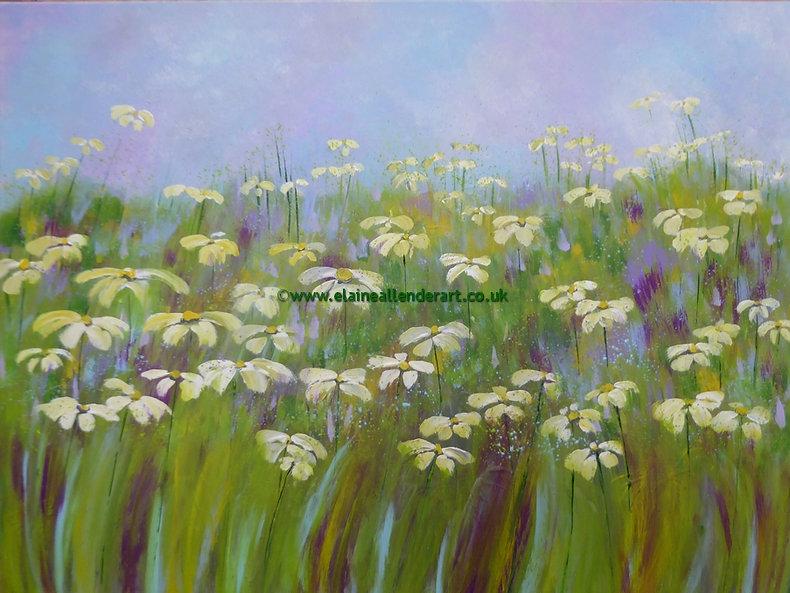 resize_summer daisies (1).jpg