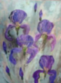 resize_wild iris frontal.jpg