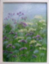 resize_verbena and cow parsley (1).jpg