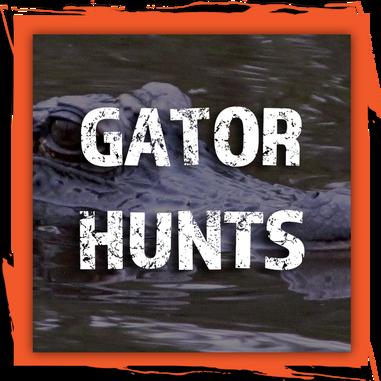 Gator Hunts.png