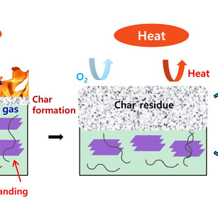 Highly functional carbon-based nanocomposites