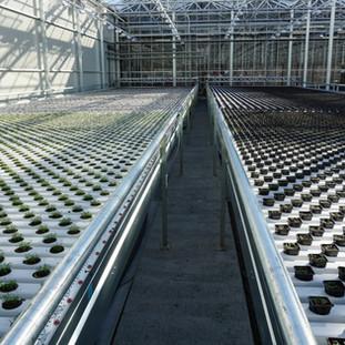 Precise irrigation