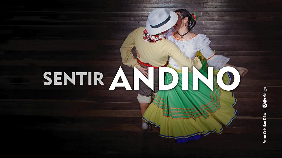 sentir-andino-wix.png