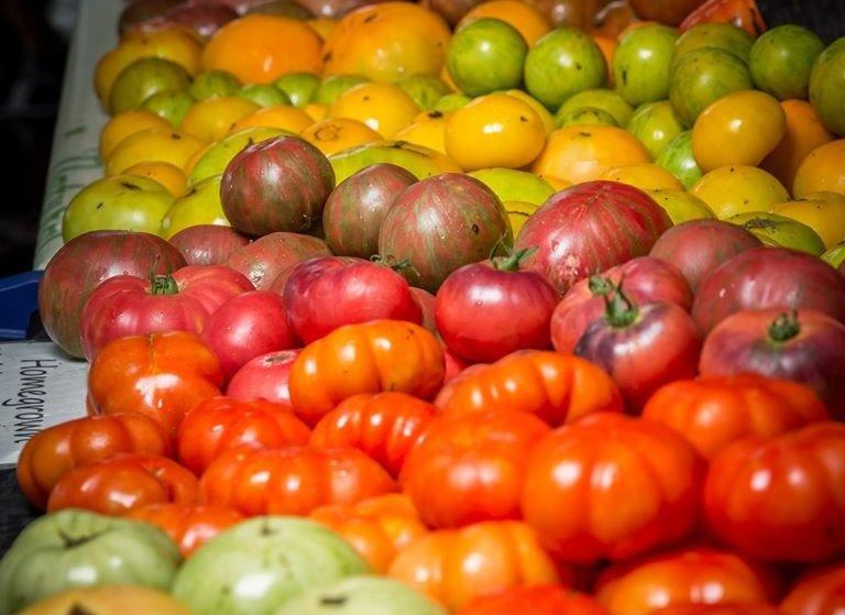 tomato%2520tomato_edited_edited.jpg