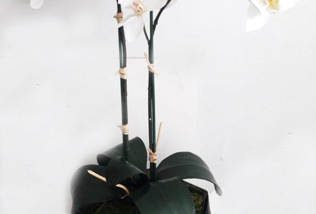 Arreglo Floral Artificial Rombos