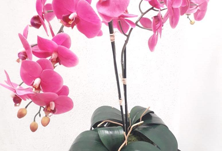 Arreglo Floral Artificial Panna 42