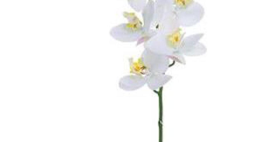 "Orquídea Phalaenopsis Spray 30"" Blanca"