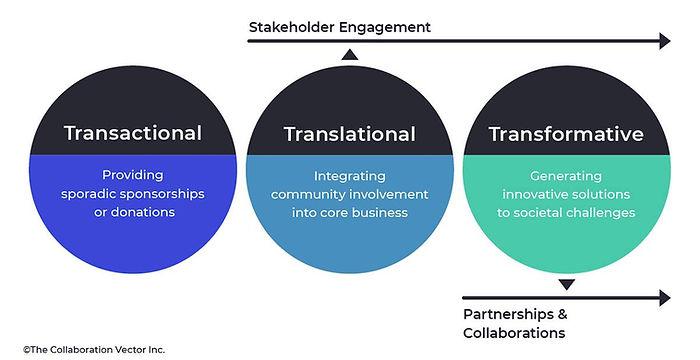 TCI framework - Eng - opt.jpg