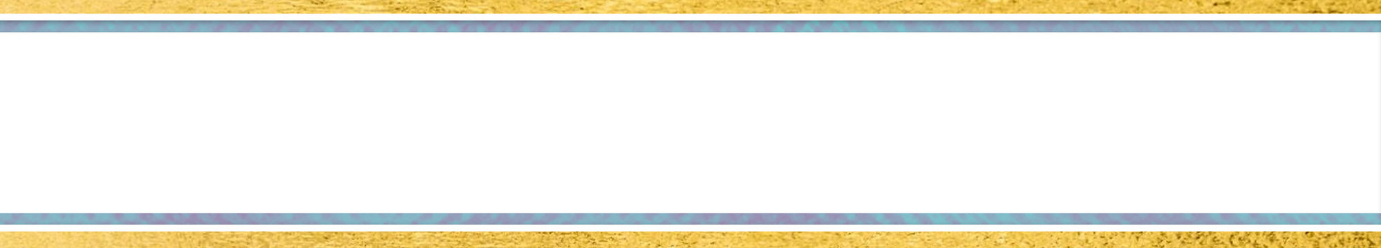 Slim banner (for ambassadors).jpg