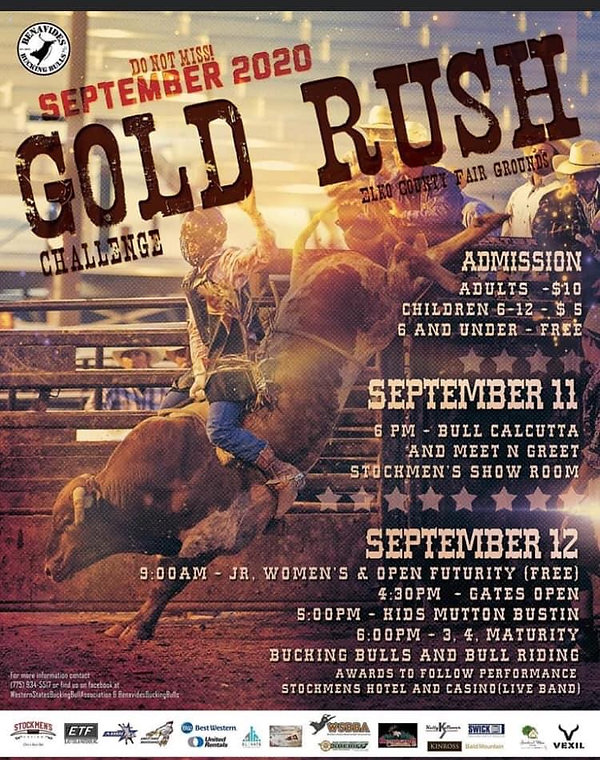Gold Rush Challenge Bull Riding.JPG