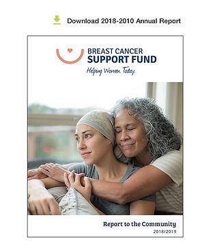 2018-2010-annual-report-bcsf.jpg