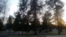rv park 2.jpg
