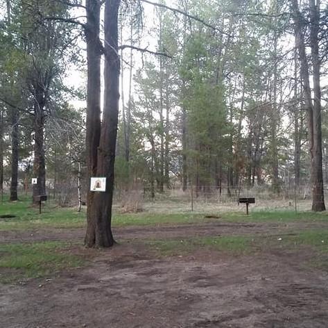 rv park 4.jpg