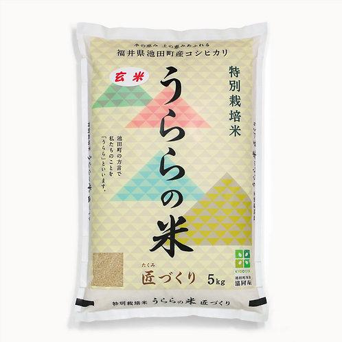 うららの米 匠づくり[玄米5kg]