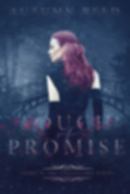 Touch of Promise Cover - Final.jpg