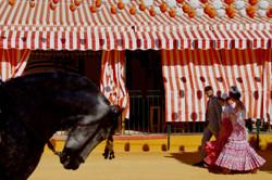 © Sandra Haag // Seville, Spain