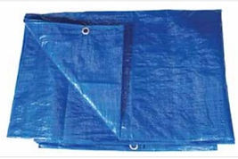 plastic tarps.jpg