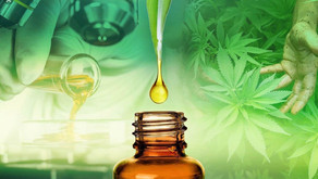 Israel Researchers Believe CBD Could Play Crucial Role In COVID-19 Treatment