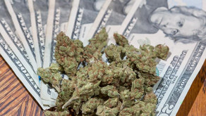 Week in Review: US cannabis sales to top $15B, Illinois licensing delays, NJ at forefront of legaliz