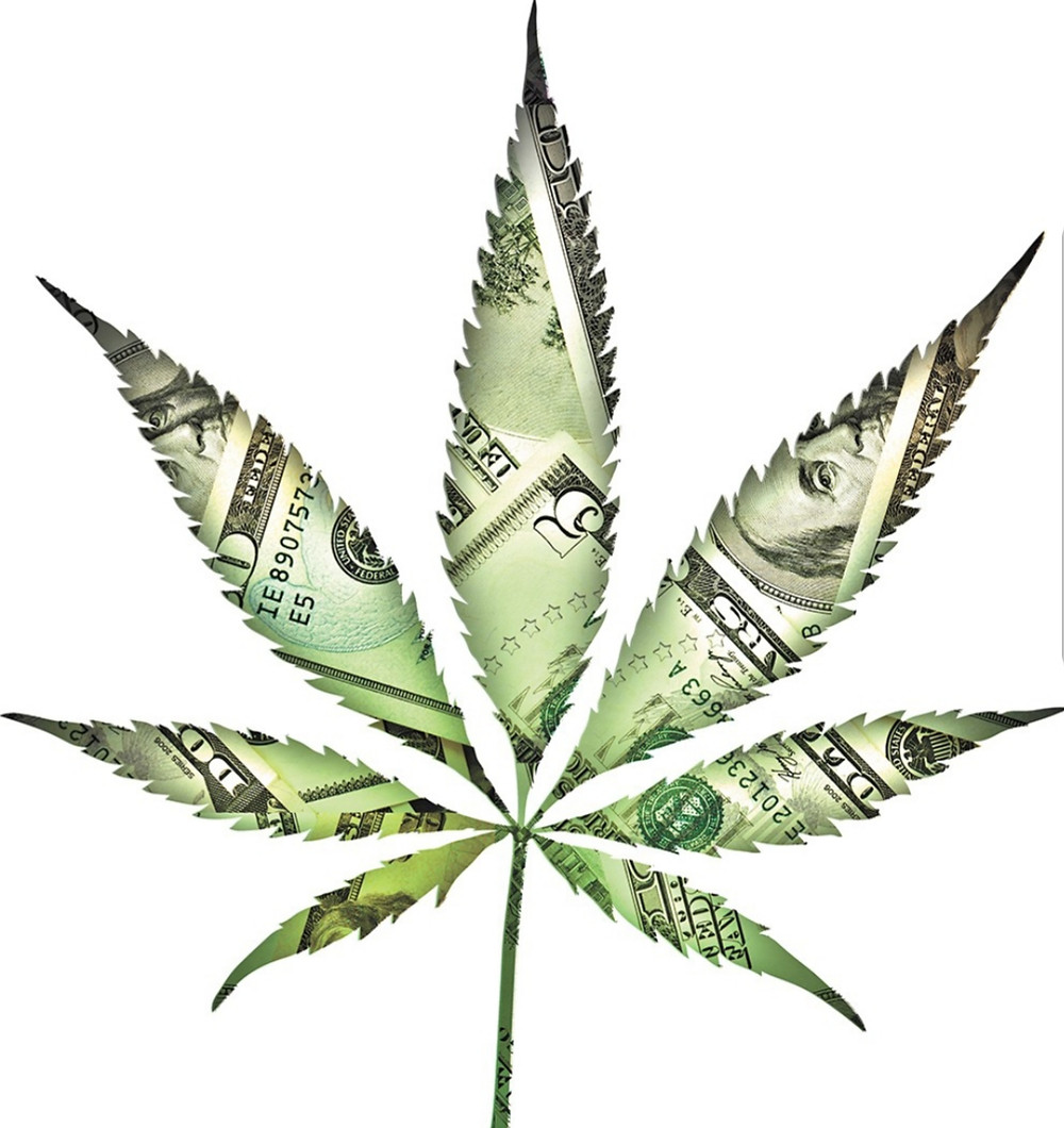 Make MONEY in the Cannabis Industry