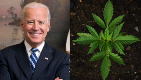 Biden Proposes Federal Aid To Help States Expunge Marijuana Records