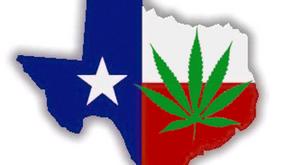 87th Texas Legislature