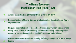 Rand Paul Files Bill To Increase Hemp THC Limit And Address Other Industry Concerns