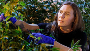 6 Weed Wonder Women Kicking Bud and Taking Names in the Cannabis Industry