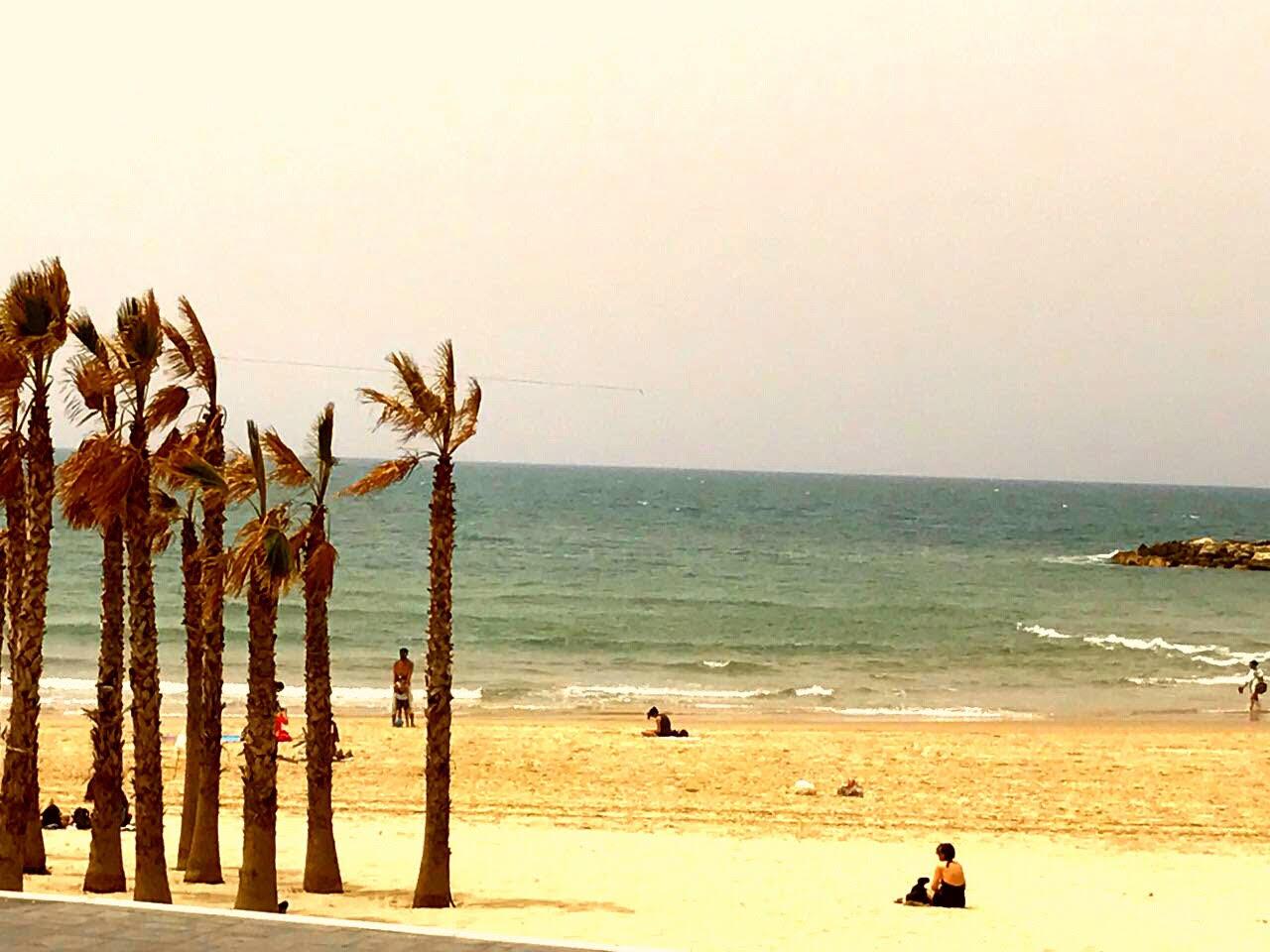 ליד הים 2