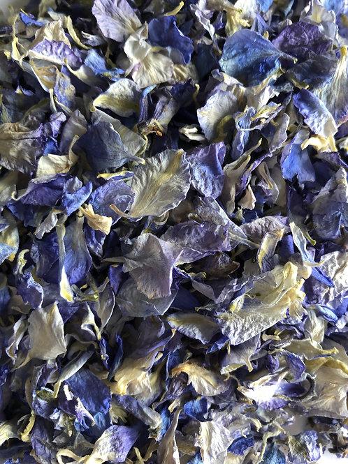 Denim Blue Delphinium Petals