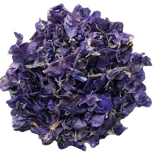 Indigo Delphinium Petals