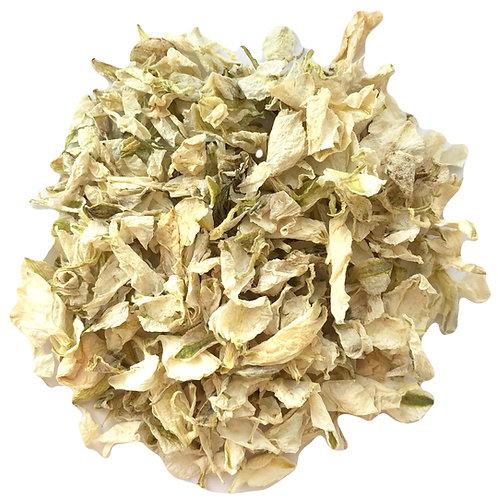 Honeydew Delphinium Confetti Petals
