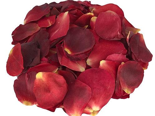 Red Velvet freeze-dried rose petals