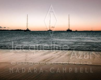 Jacqueline Madara-Campbell - When the Bo