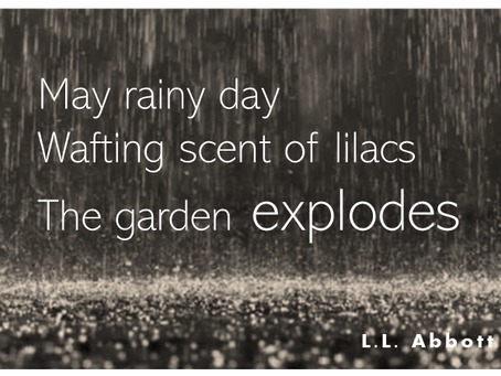 Rain as a Muse . . .