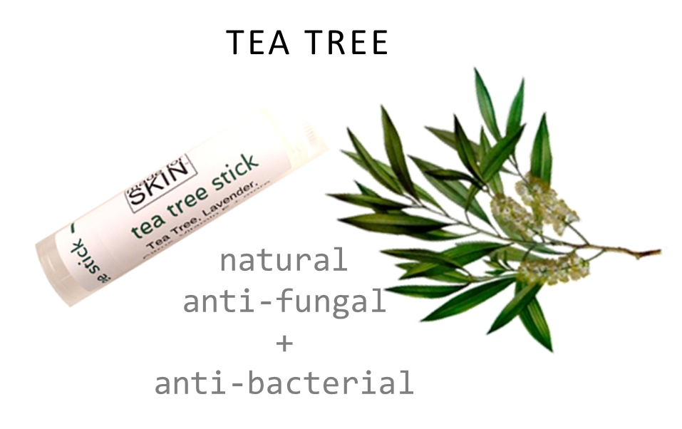 Tea Tree skin care products | natural ingredients | made for SKIN