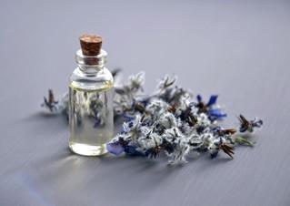 Best Essential Oils for Better Sleep