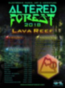 LAVA REEF 2018.jpg