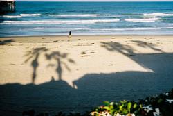 CALIFORNIA DAY3
