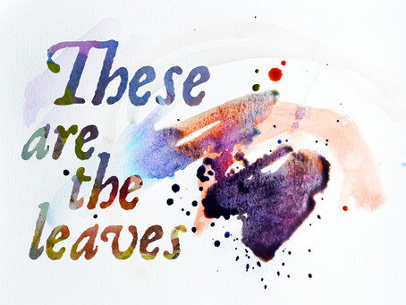 These are the leaves