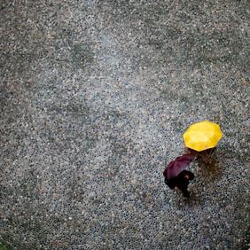Giovana_guarda chuva.jpg