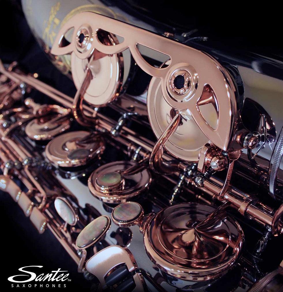 Santee 2C4 tenor in black/rose gold.jpg