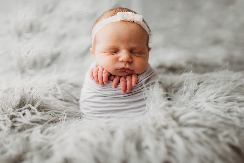 posed newborn photography connecticut