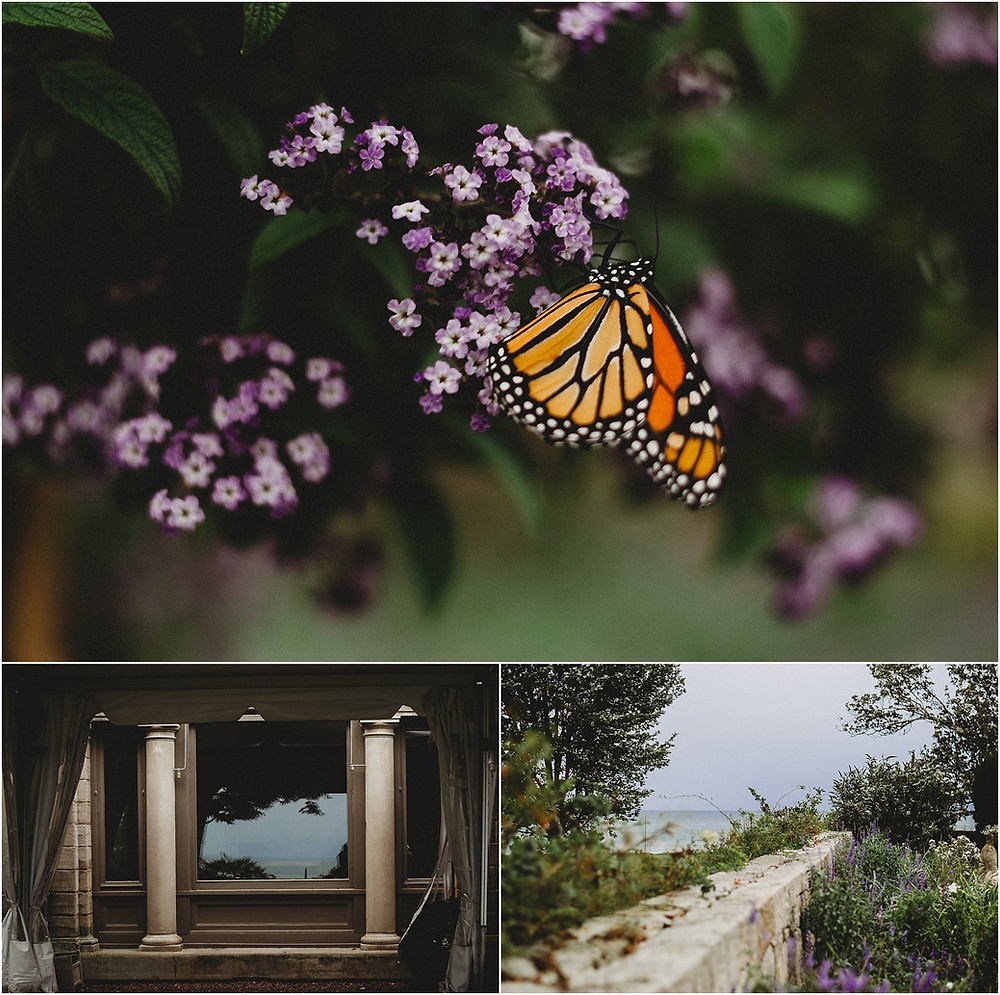 Beautiful gardens at Harkness Memorial State Park | Southeast Coast CT Family and Maternity Photographer