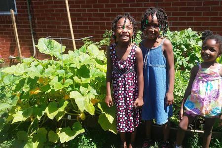 BRIDGE Partners with the Inspiritus' Healthy Gardens Program!