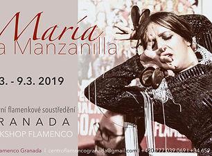 María_banner_curso_Granada_marzo_2019.jp
